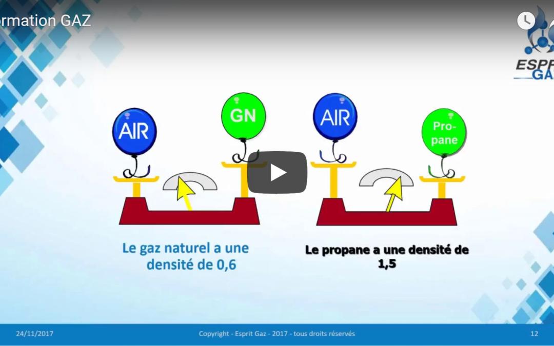 Formation GAZ en ligne : » Prévention & Sécurité Gaz dans les établissements recevant du public et industries.»