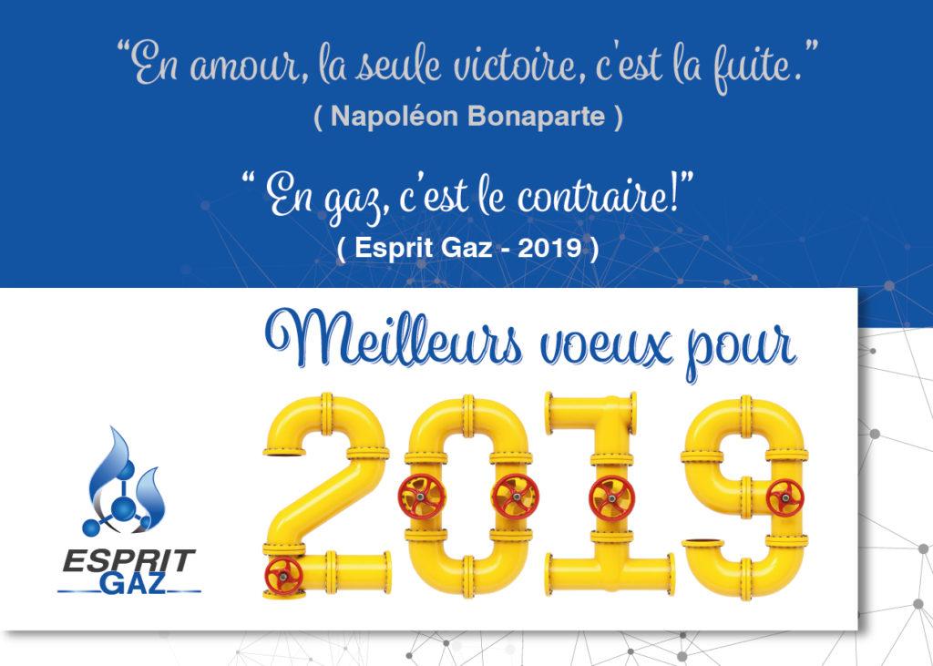 Voeux Esprita Gaz 2019 : En amour, la seule victoire c'est la fuite (Napoléon Bonaparte) En Gaz, c'est le contraire