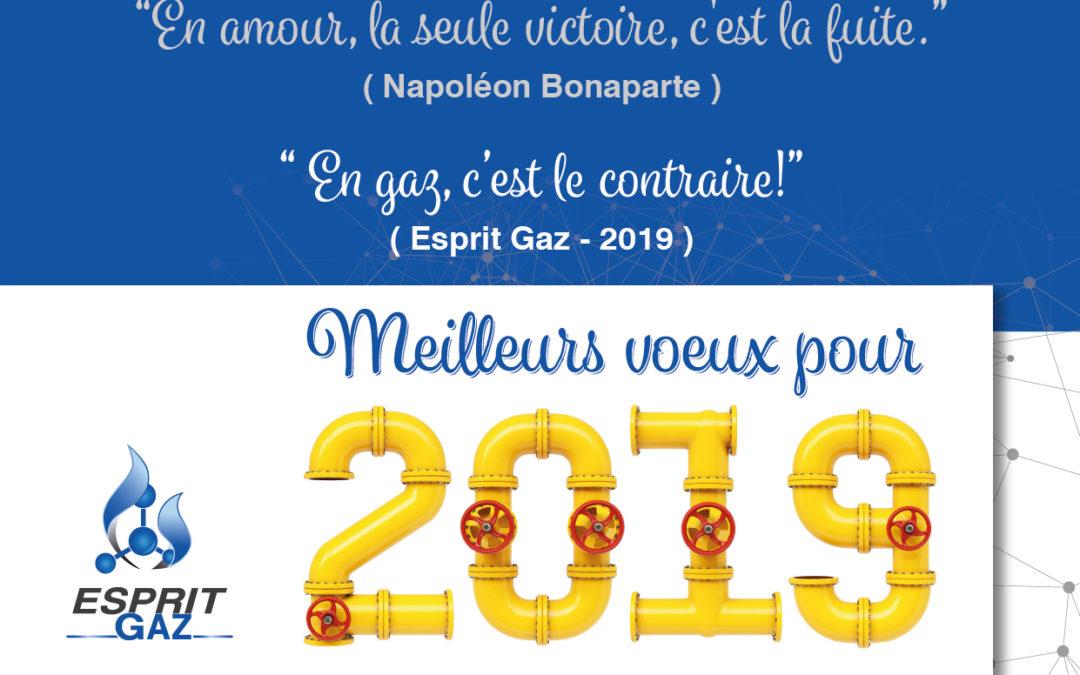 Esprit Gaz vous souhaite ses meilleurs vœux de bonheur et de réussite pour 2019